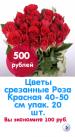 Цветы срезанные Роза Красная 40-50 см (упак. 20 шт.)87765