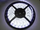 LED-лента белая