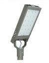 Уличный светодиодный светильник ДКУ-02-095-65Д