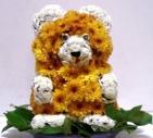 медведь из цветов