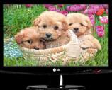 81679 ЖК-монитор 23.0» LG «Flatron W2343S»